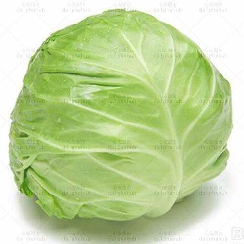 Cabbage 1kg 大头菜(1公斤)