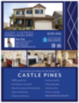 Sapphire Template Flyer