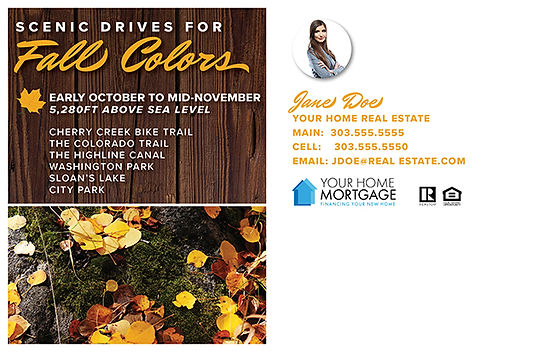 Fall Colors Postcard (Back)
