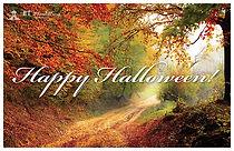 Halloween 6 Postcard