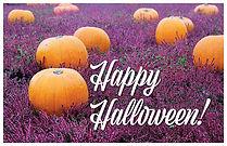 Halloween 1 Postcard