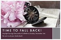Fall Back 3 Postcard