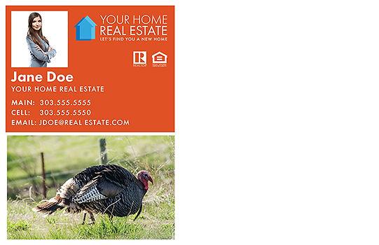 Happy Thanksgiving 3 Postcard (Back)