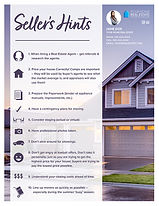 Seller Hints Infographic Flyer