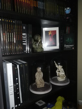 Collectore picture
