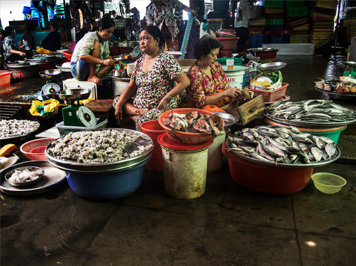 Wet Markets #1