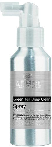 Deep Cleansing Anti Dandruff Spray 100ml