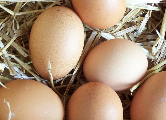 Яйца куриные, деревенские 10 штук