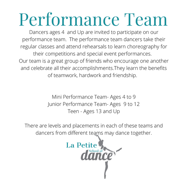 Performance Team no background.png
