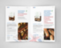 lm brochure1.jpg