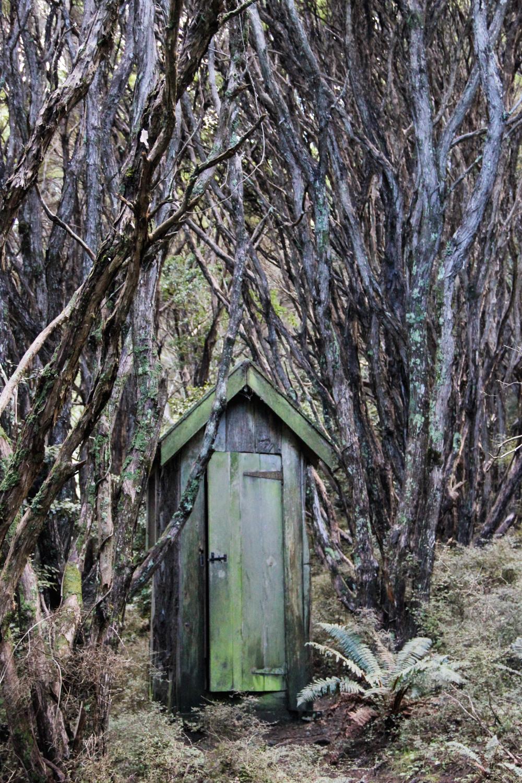 New Zealand - shot on film