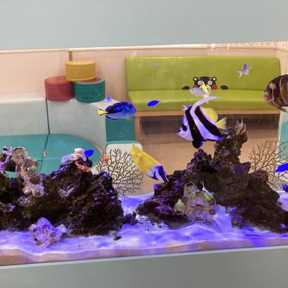 熱帯魚とサンゴ