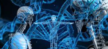 biotechnológia gyorskamera