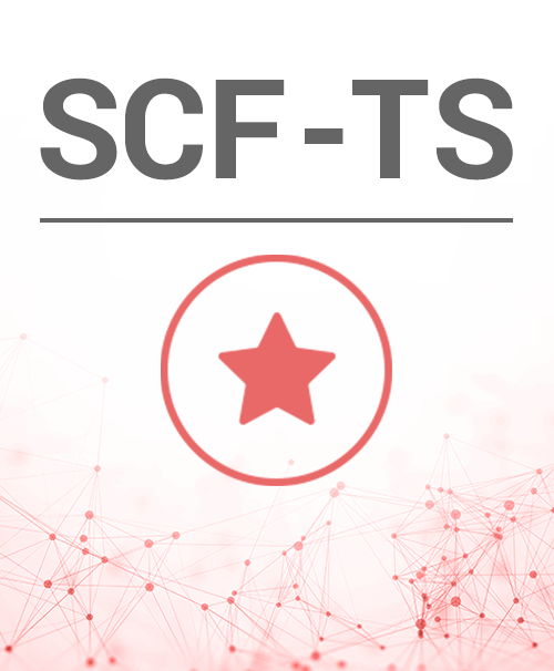 SCF-TS Siemens FC360 Cerberus Fit tűzjelző