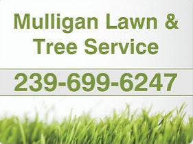 Mulligan Tree service.jpg