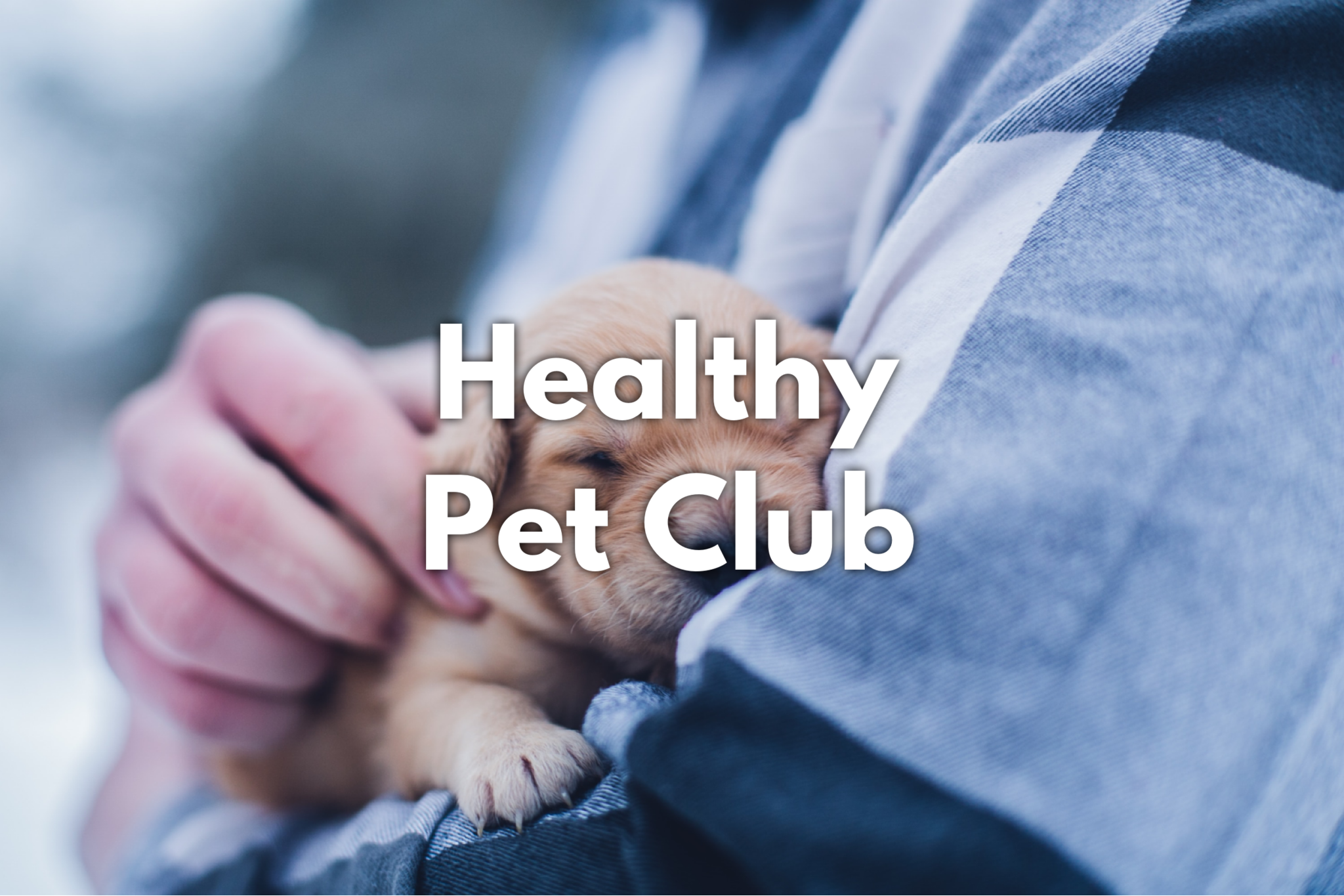 Healthy Pet Club