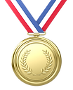 Medal Pic.png