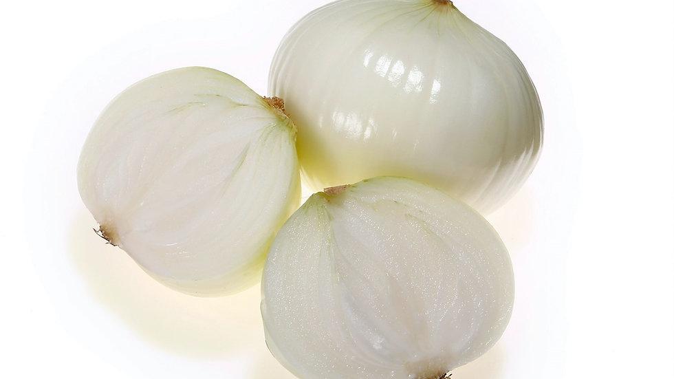 大洋葱 Jumbo Onion