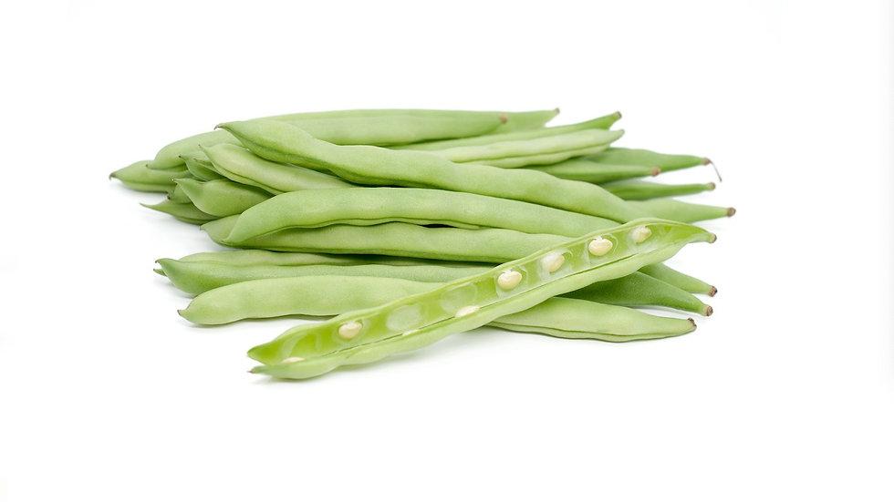 四季豆 - Green Bean