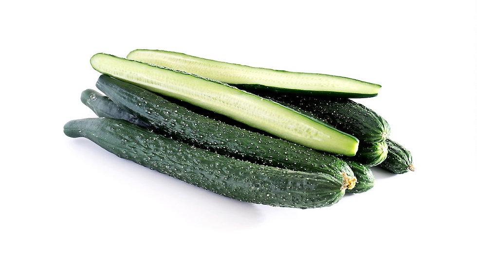 黄瓜 Cucumber