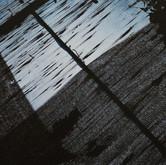 Kite / Хвърчило