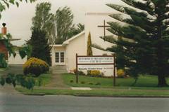 pine 2 1990.jpg