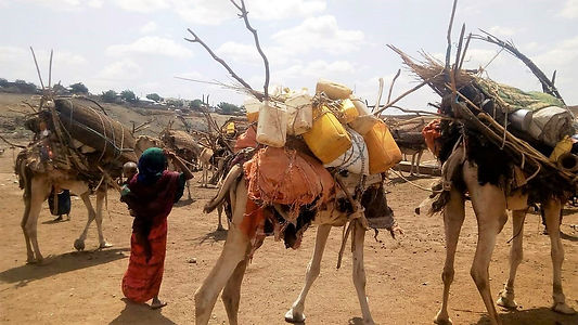 Famine Early Warning System Network