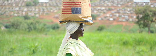 Food Aid Quality Review