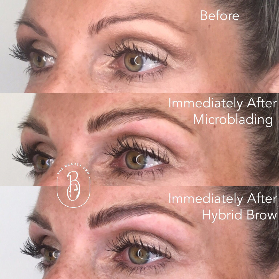 Hybrid Brows by Suz DeNeen 2019.2.jpg