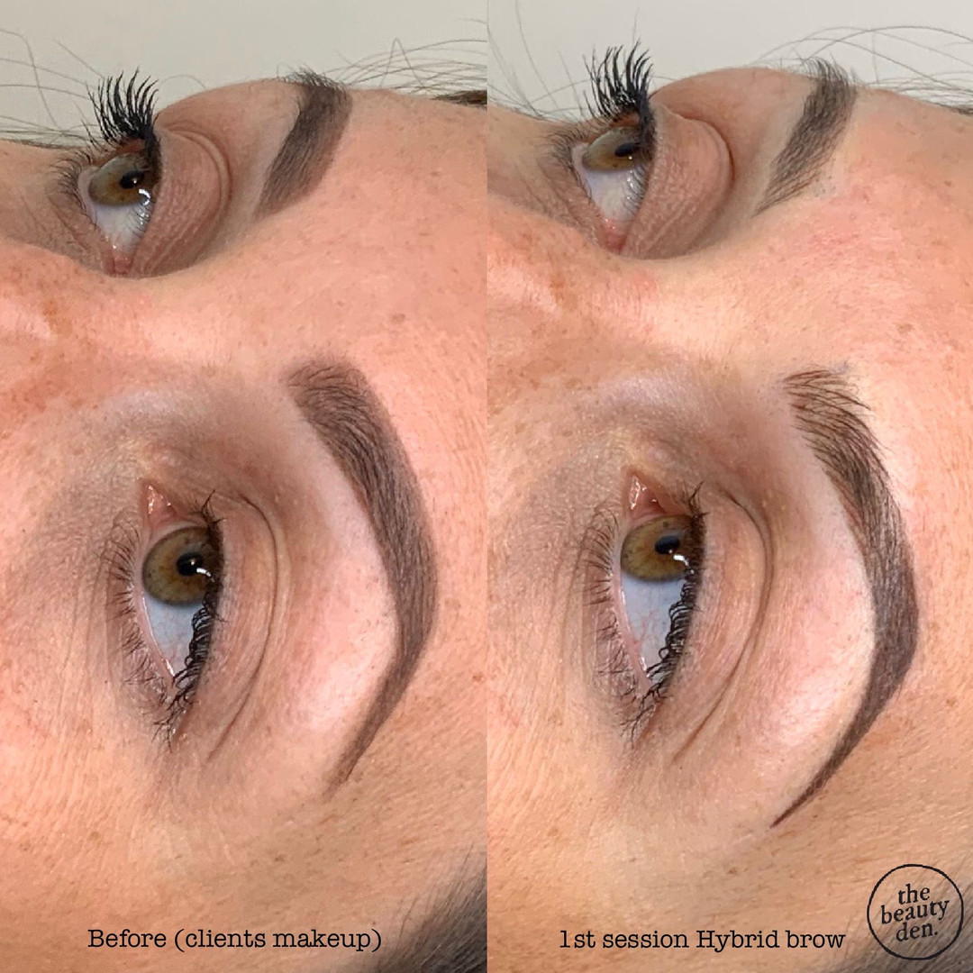 1st session Hybrid brows zg2019.JPG