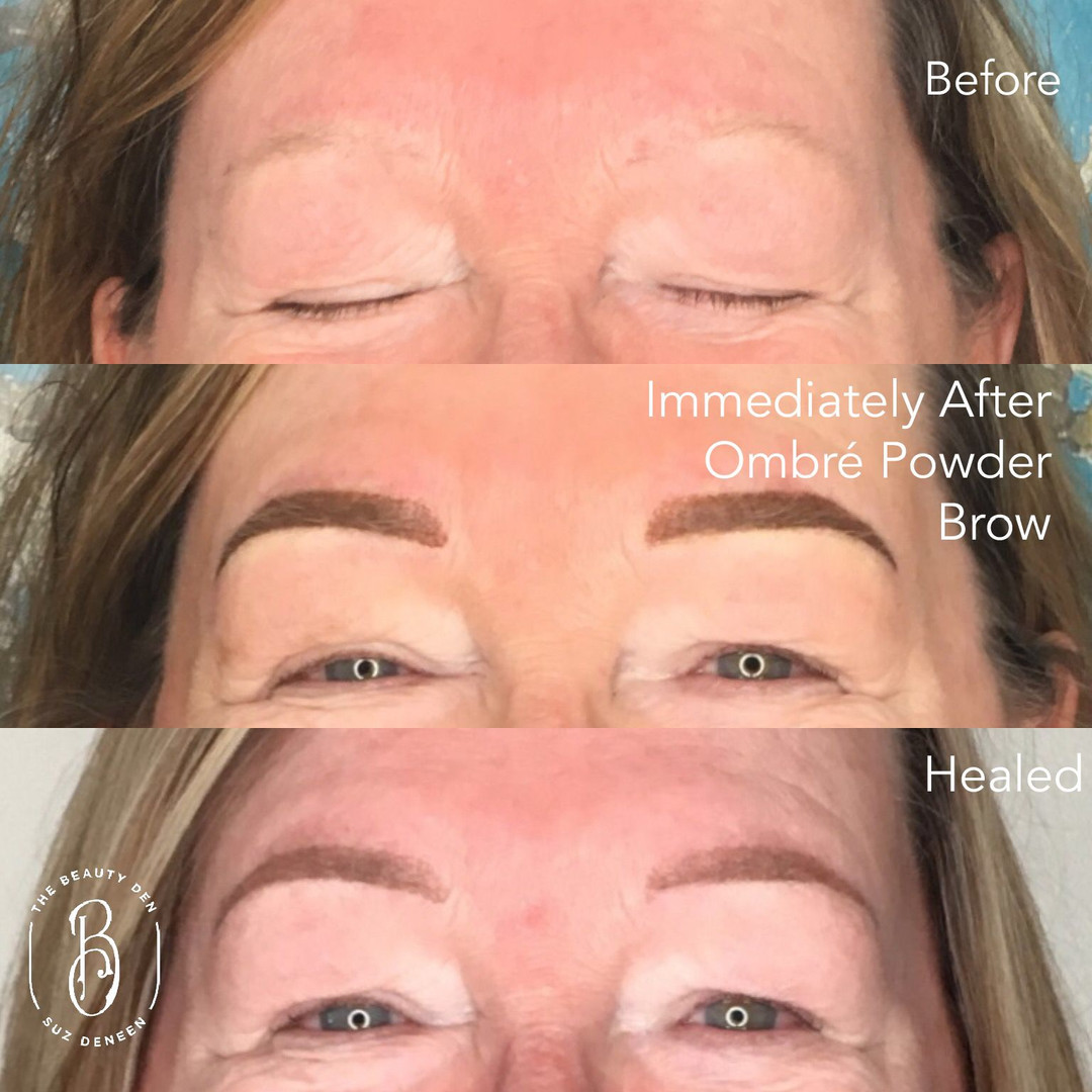 Ombre Powder Brows by Suz DeNeen 2018