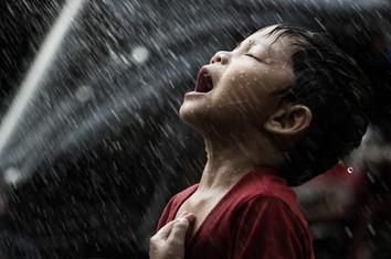 Segie in the rain