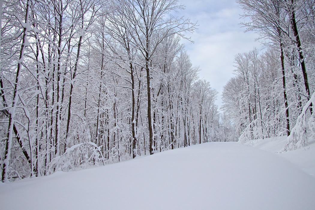 hiver06