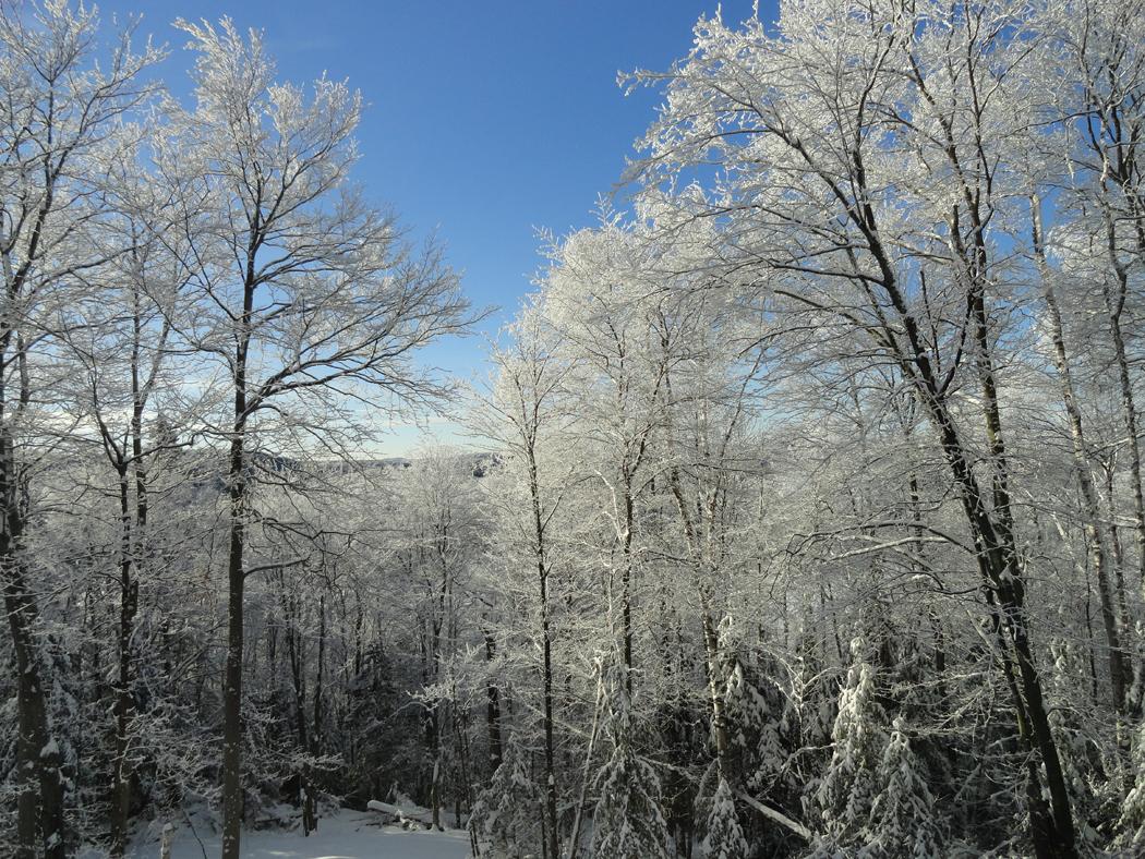 hiver2015-02