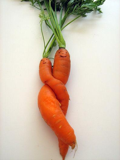 carottes 001nid.jpg