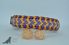 Paracord Halsband Crown Trail