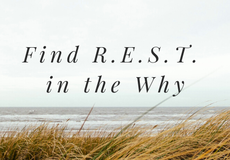 Find R.E.S.T. in the Why