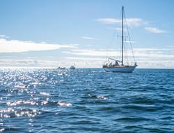 Boat2016-2955