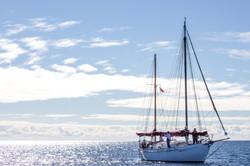 Boat2016-0004