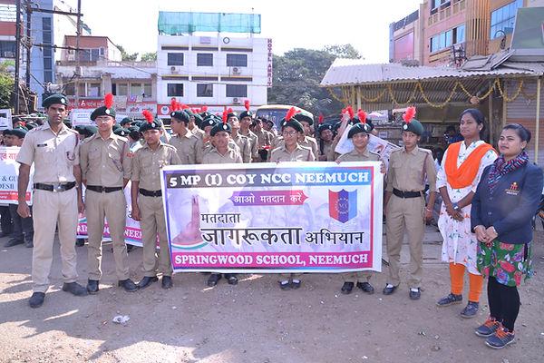 Voter awareness day.JPG