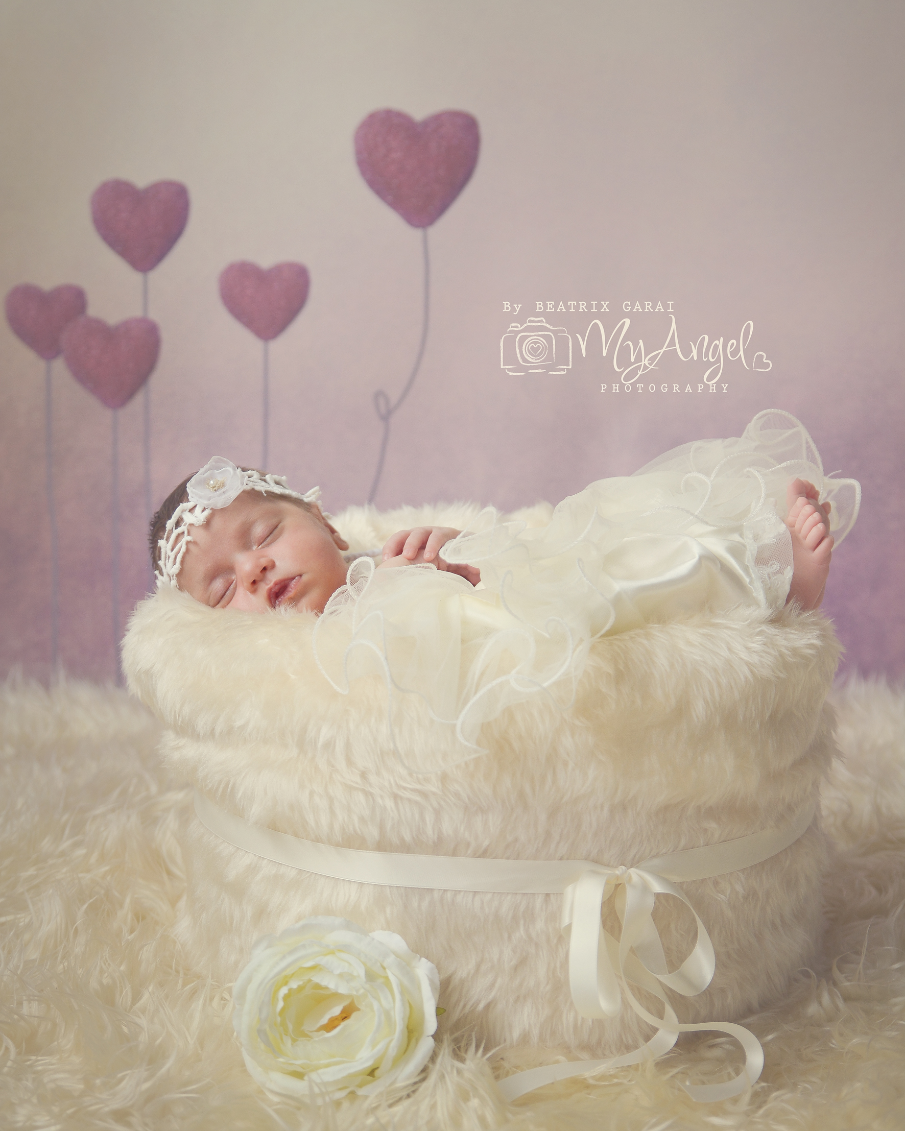 Babyfotografie Winthertur