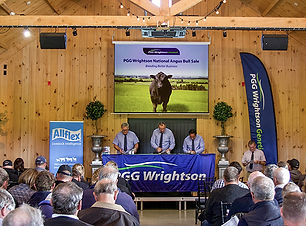 National Angus Bull Sale event space.jpg
