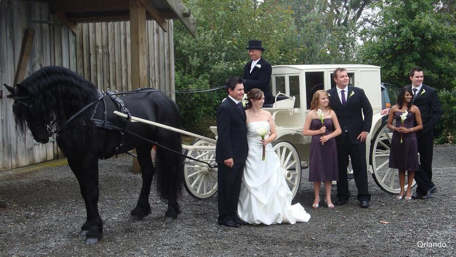 Orlando Weddings - Photos in the Grounds