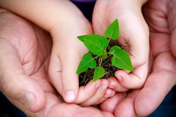 mundo-sustentável-2.jpg