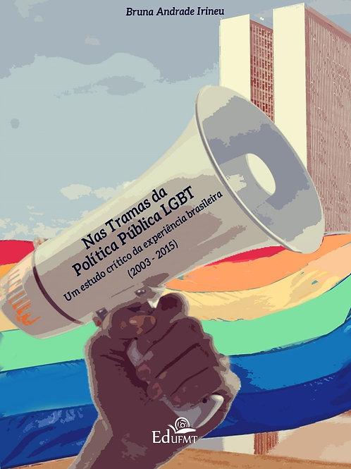 NAS TRAMAS DA POLÍTICA PÚBLICA LGBT: UM ESTUDO CRÍTICO DA EXPERIÊNCIA BRASILEIRA