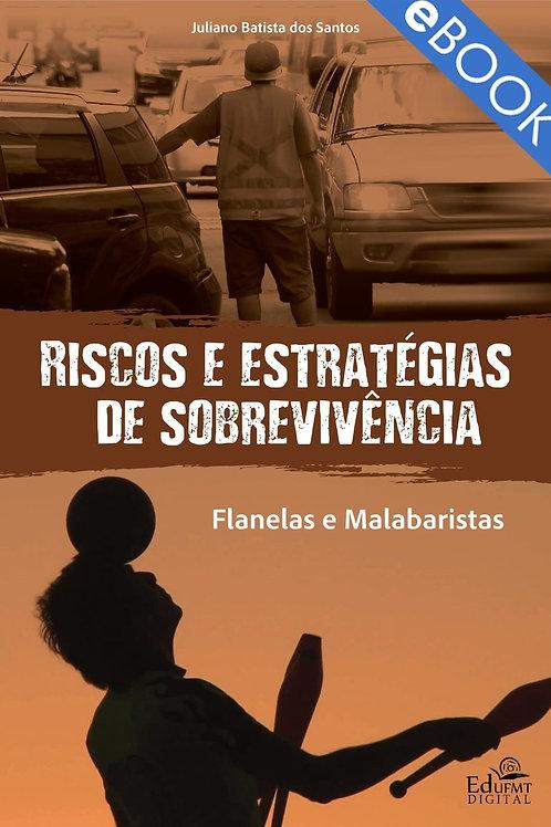 RISCOS E ESTRATÉGIAS DE SOBREVIVÊNCIA: FLANELAS E MALABARISTAS