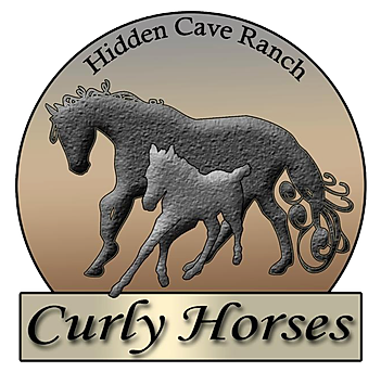 Hidden Cave Ranch curley horse.png