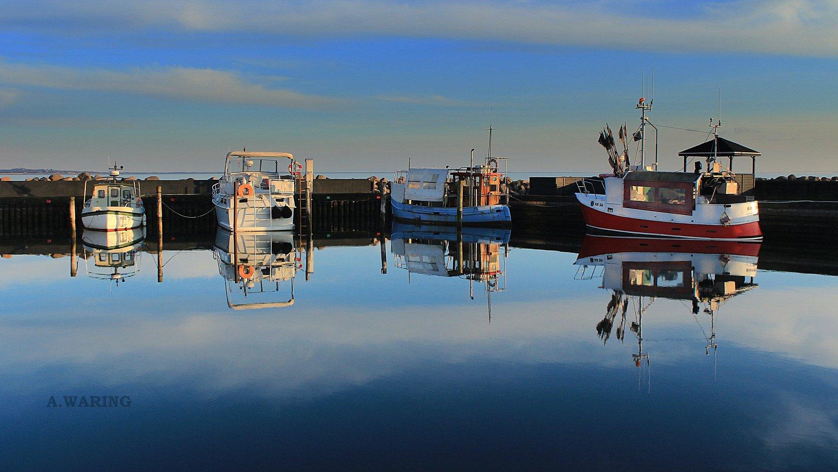 havn v_Alan Waring