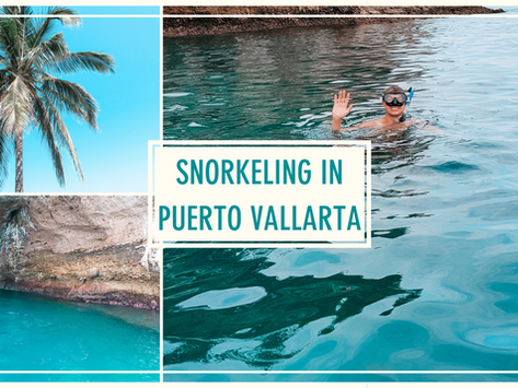 The Ultimate Guide to Snorkeling in Puerto Vallarta, Mexico