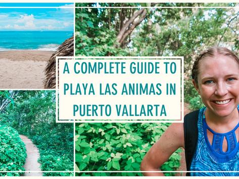 A Complete Guide to Playa Las Animas in Puerto Vallarta